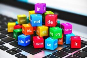 Избор на подходящ домейн за сайт от SEOMAX